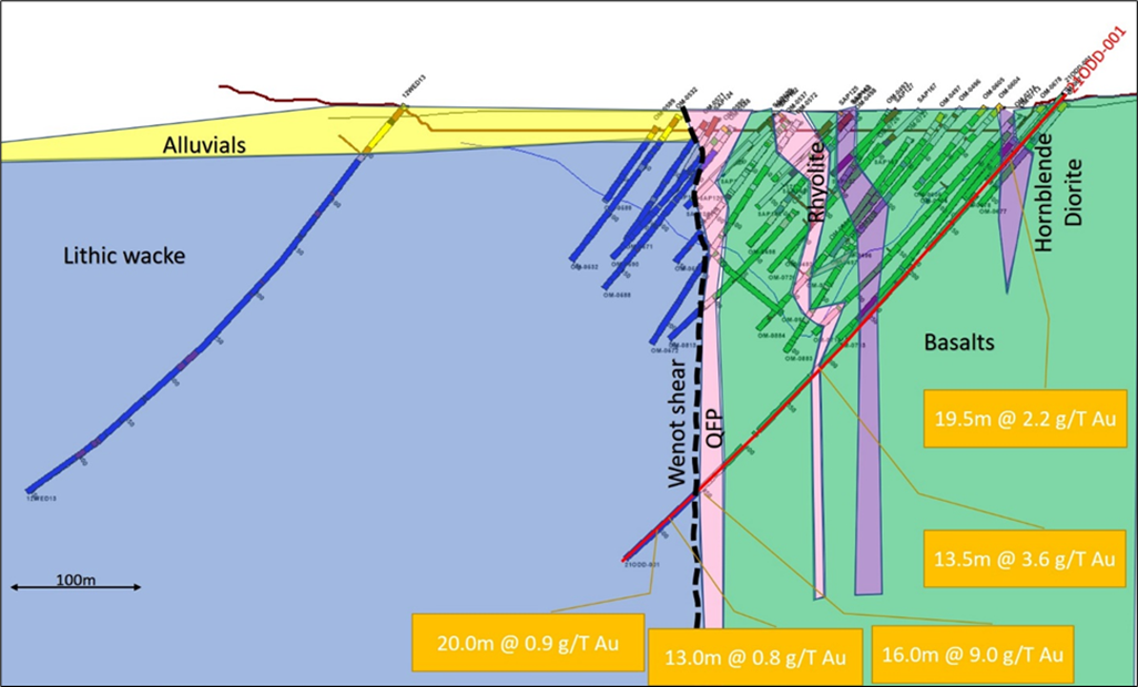 Figure 2: Section 5530 (looking west) showing geology and gold intercepts of hole 21ODD-001 (538 m end-of-hole).