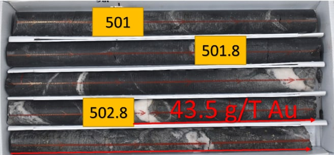Figure 4: High-grade intercept close to a highly silicified and brecciated zone within basalt, with 5% sulfides disseminated (1 meter at 43.5 grams/tonne gold)